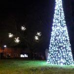 Our beautiful Christmas tree and mistletoe lights